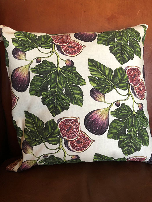 Cushion Fig Big